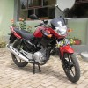 SDC10115