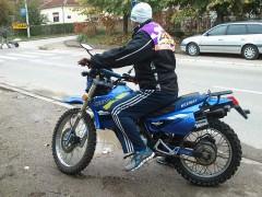 kiwi 0097