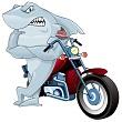 Shark with Bike Art faceleft GPS 2009 normal