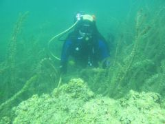 podvodna arheolog 741