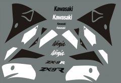 kawasaki ninja zx9r2