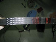 IMG 5153