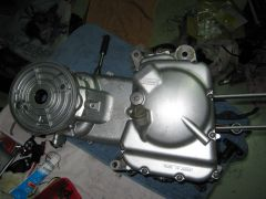IMG 5105
