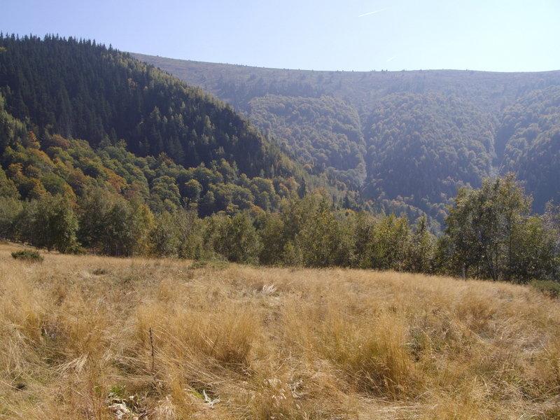 Stara-2014-47.jpg