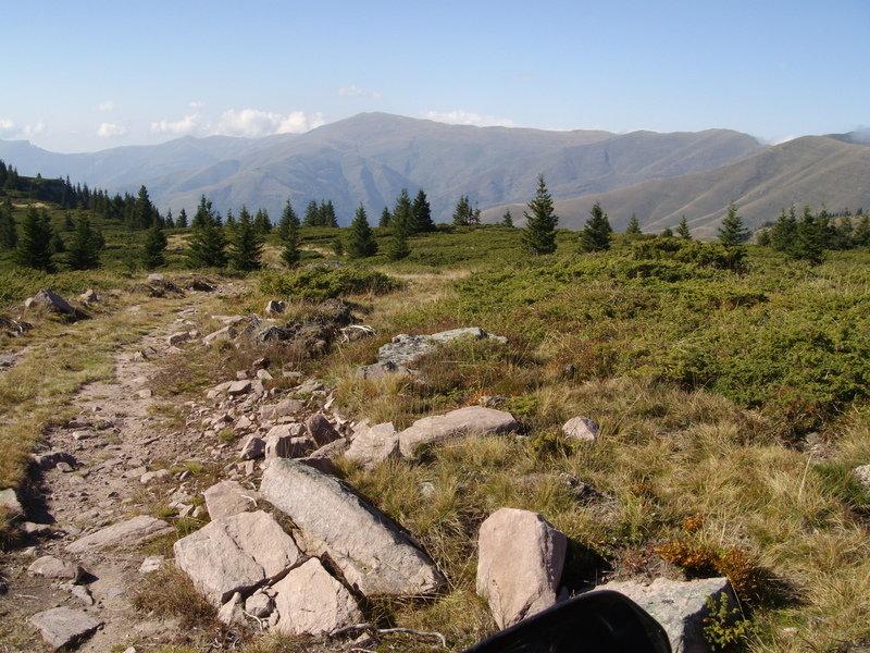Stara_2014_(60).jpg