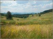Zlatibor_juli_2013_72.jpg