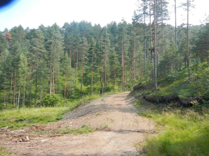 Zlatibor_juli_2013_85.jpg