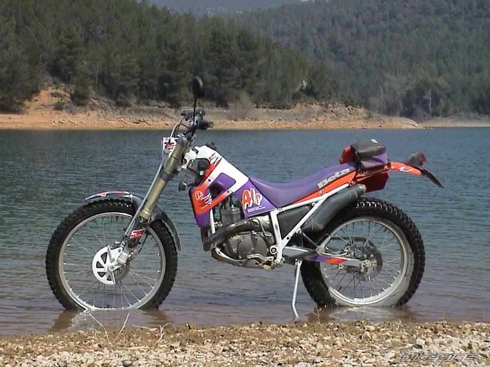 alp200.jpg