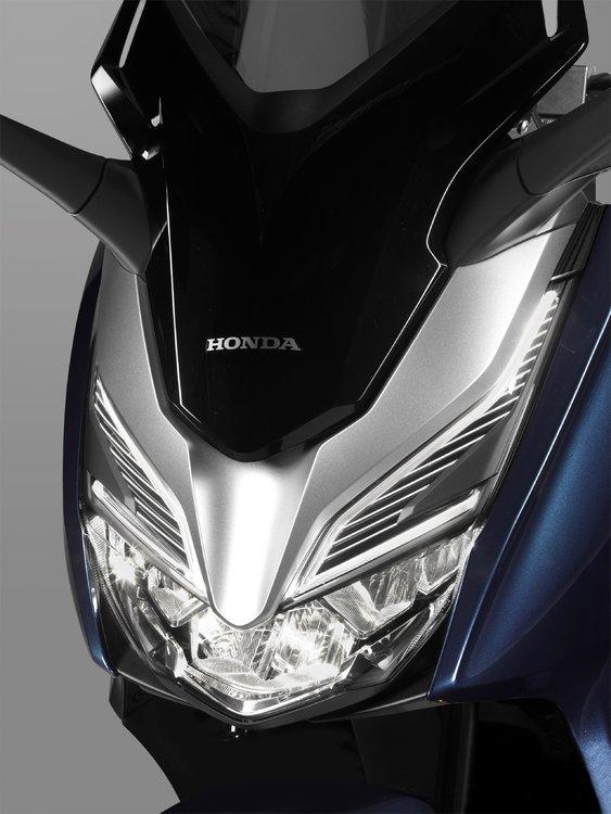 127261_Honda Forza 300.jpg